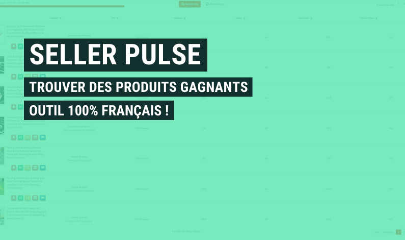 seller pulse avis